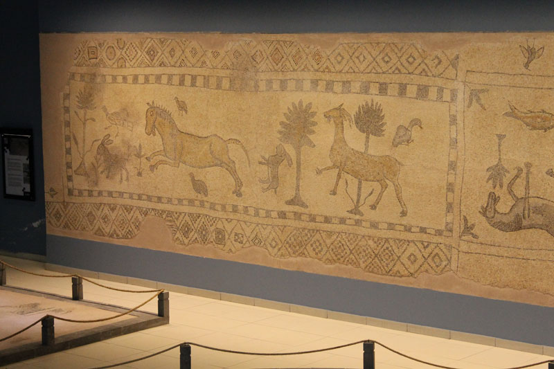 Musee de Zeugma - Mosaïques animales - Saridere