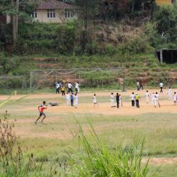 Enfants jouant au cricket, sport national du Sri Lanka !