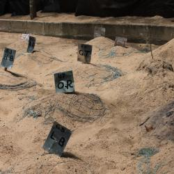 Turtle Hatchery - Oeufs de tortues